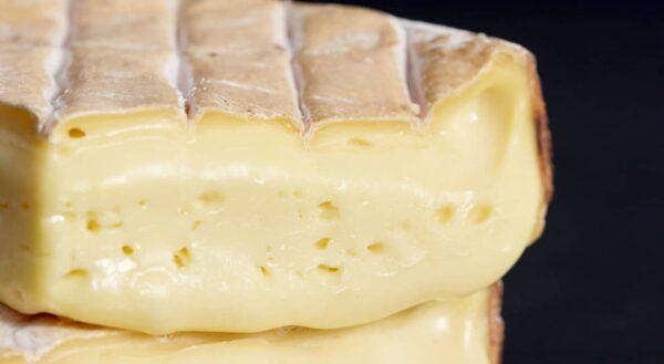 cheese tasting yarra valley