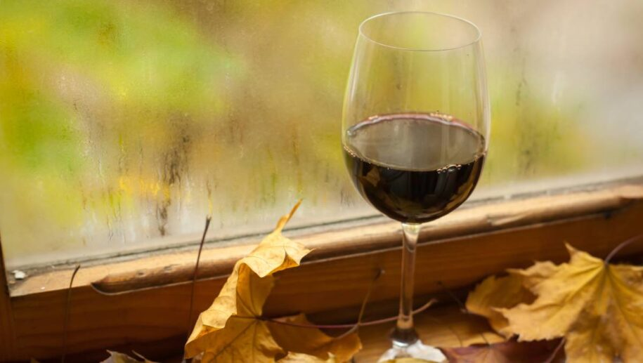 Best Wines to Drink from Yarra Valley in Autumn 2